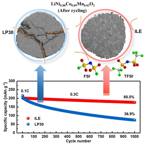 Mit dem ionischen Flüssigelektrolyten ILE (rechts) lassen sich Strukturveränderungen an der nickelreichen Kathode NCM88 weitgehend vermeiden; die Kapazität der Batterie bleibt über 1 000 Ladezyklen zu 88 Prozent erhalten. (Abbildung: Fanglin Wu und Dr. Matthias Künzel, KIT/HIU)